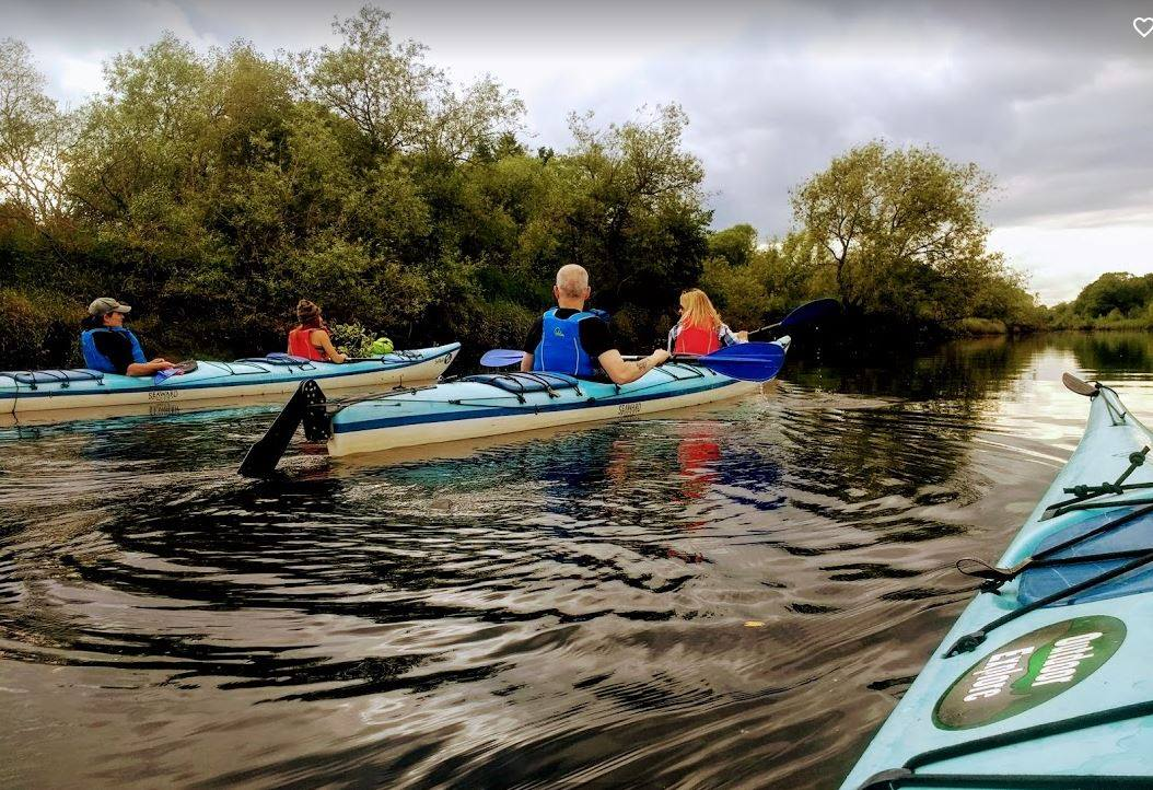 Four people in two-person kayaks going down the River Tay looking for beavers