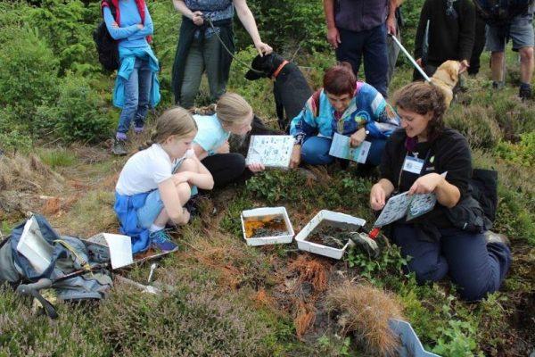 Daniele Muir showing children diagrams on an education wilderness walk
