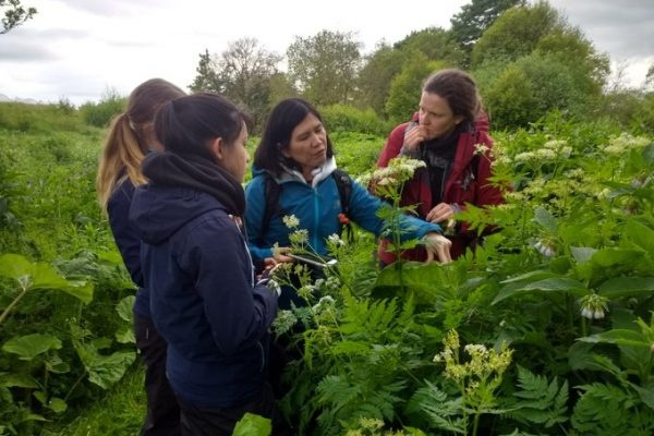 Daniele Muir with three women from a tour foraging for food