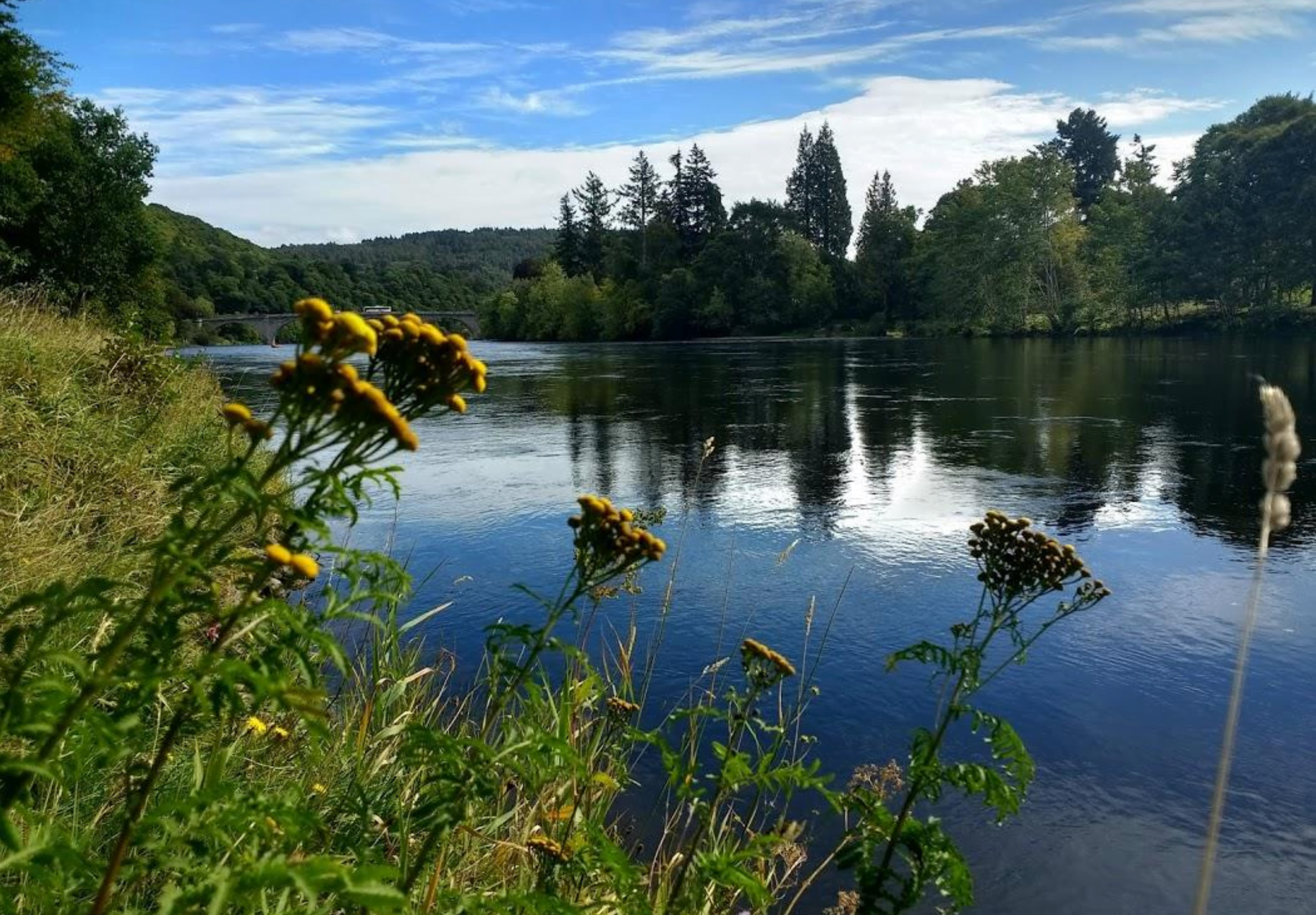A river in Perthshire on a sunny day