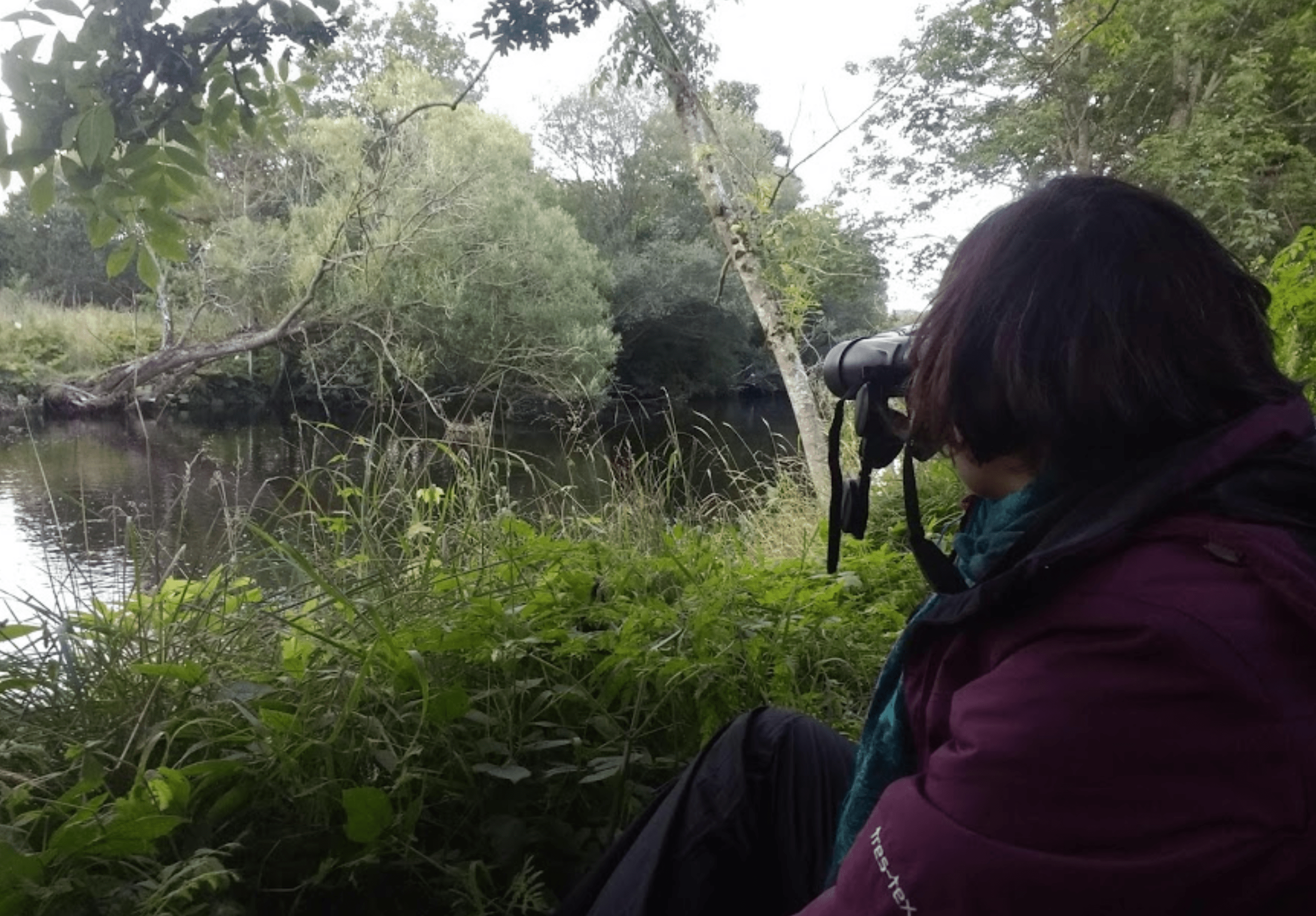 Woman watching for beavers through binoculars
